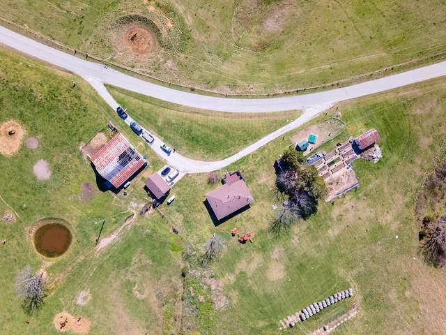 2387 Dogwood Tree Road, Reeds Spring, MO 65737 (MLS #60187060) :: Team Real Estate - Springfield