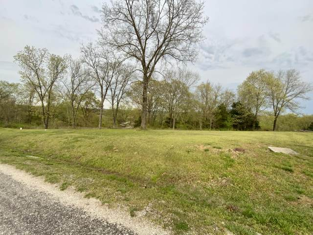 516 North View Drive, Branson, MO 65616 (MLS #60187271) :: Tucker Real Estate Group | EXP Realty