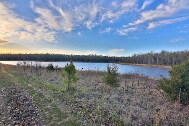 000 Highway 62/412, Viola, AR 72583 (MLS #60187298) :: United Country Real Estate