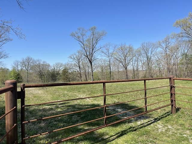 26511 Farm Road 1255, Golden, MO 65658 (MLS #60188232) :: Evan's Group LLC