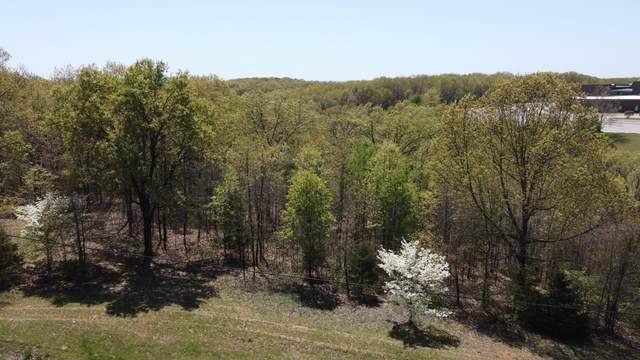 000 Mo-413 Highway, Reeds Spring, MO 65737 (MLS #60188774) :: Winans - Lee Team | Keller Williams Tri-Lakes