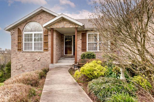341 Mesquite Drive, Branson, MO 65616 (MLS #60189082) :: Sue Carter Real Estate Group