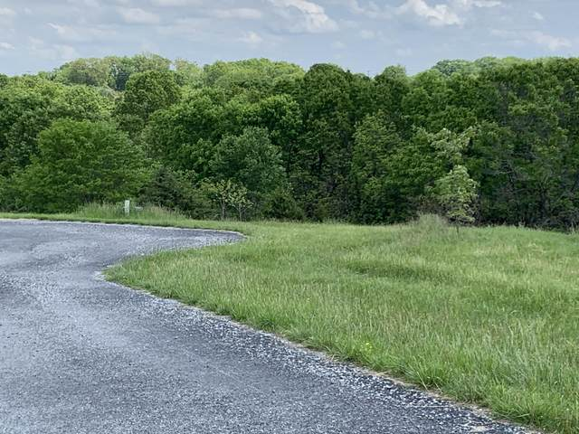 Lot 3 Vineyard Court, Reeds Spring, MO 65737 (MLS #60190636) :: The Real Estate Riders