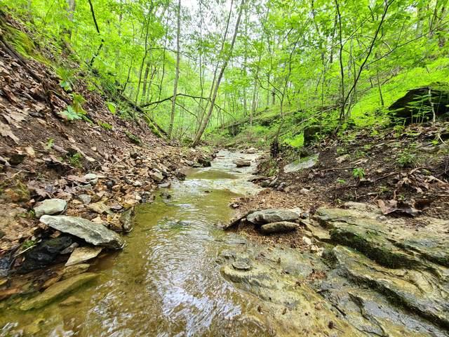 000 Buckskin Ridge, Highlandville, MO 65669 (MLS #60190721) :: Lakeland Realty, Inc.