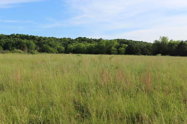 000 West State Hwy Cc, Pleasant Hope, MO 65725 (MLS #60191432) :: Clay & Clay Real Estate Team