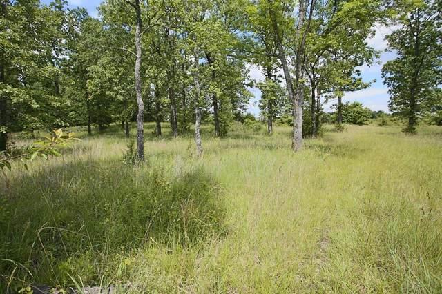000 Arrowhead Acres, West Plains, MO 65775 (MLS #60192244) :: Clay & Clay Real Estate Team