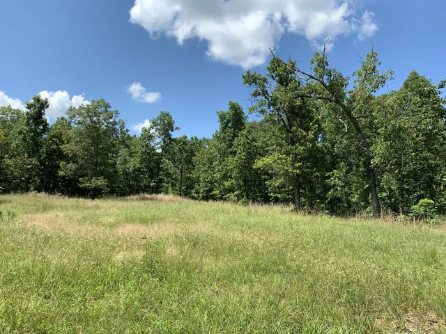 000 County Road 9790, West Plains, MO 65775 (MLS #60192810) :: Clay & Clay Real Estate Team