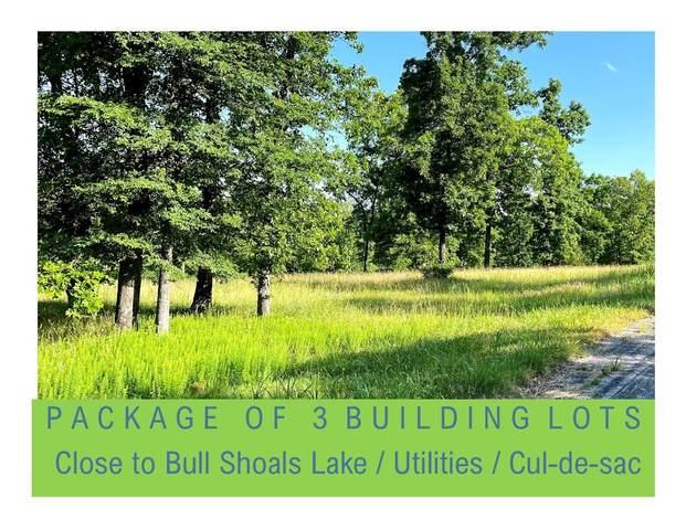 000 Cedar Springs (Lots 9, 10, 11) Avenue, Kissee Mills, MO 65680 (MLS #60193275) :: Sue Carter Real Estate Group