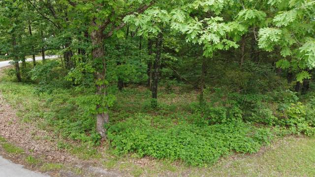723 Miners Trail Lot 6, Crane, MO 65633 (MLS #60193388) :: Sue Carter Real Estate Group