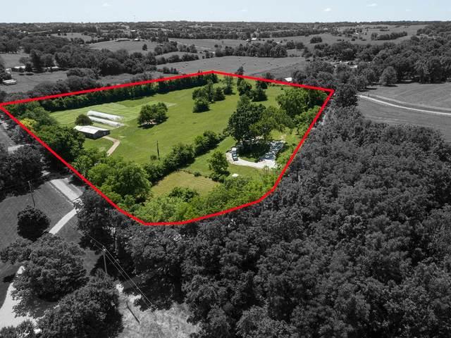 4236 Elk Valley Road, Ozark, MO 65721 (MLS #60194549) :: United Country Real Estate