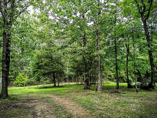 262 County Road 452, Berryville, AR 72616 (MLS #60194574) :: Sue Carter Real Estate Group