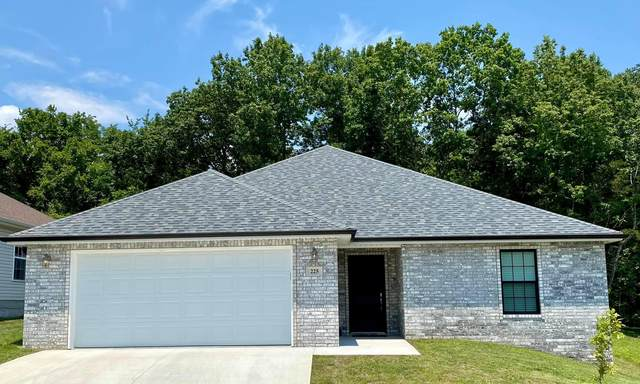 225 Redwine Circle, Branson, MO 65616 (MLS #60194796) :: The Real Estate Riders