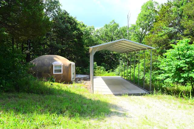 152 Old Spring Road, Blue Eye, MO 65611 (MLS #60195122) :: Lakeland Realty, Inc.