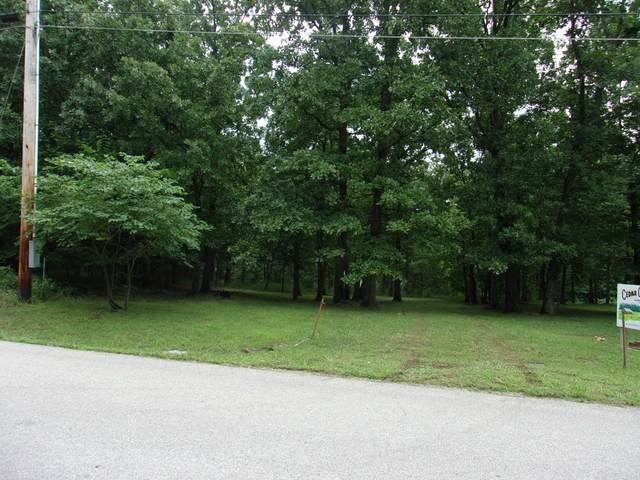 00000 Cedar Crest Drive, Hermitage, MO 65668 (MLS #60195590) :: Sue Carter Real Estate Group