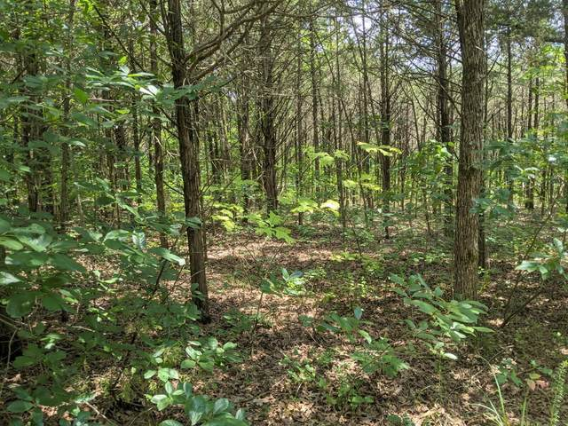 000 Lot 7A New Eagles Trail, Shell Knob, MO 65747 (MLS #60196141) :: Sue Carter Real Estate Group