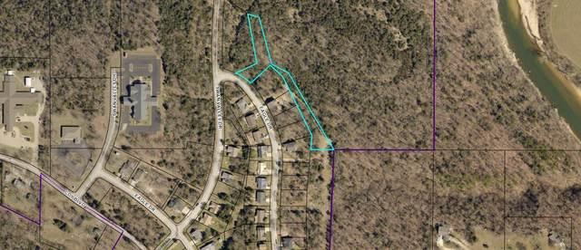 000 Eagle Drive, Forsyth, MO 65653 (MLS #60196381) :: Team Real Estate - Springfield