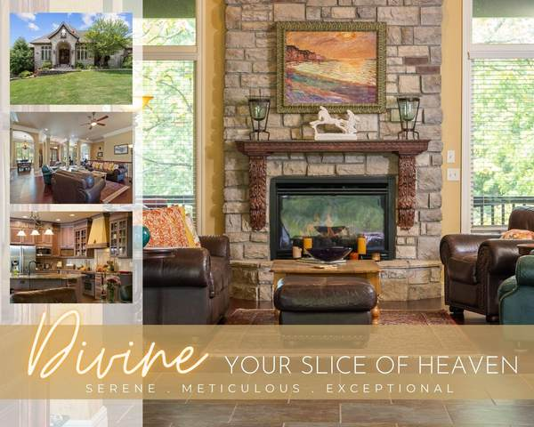 161 South Drive, Branson, MO 65616 (MLS #60196678) :: Team Real Estate - Springfield