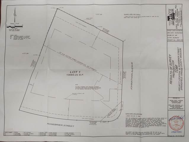 3931 W Rosebrier Street, Springfield, MO 65807 (MLS #60197988) :: Tucker Real Estate Group | EXP Realty