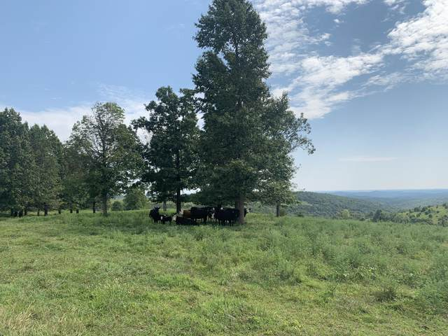 Tbd-000 S State Highway 5 Highway S, Gainesville, MO 65655 (MLS #60198758) :: Sue Carter Real Estate Group