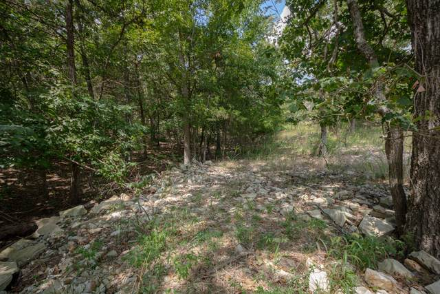 Tbd Lot 19 Overlook Phase 1, Kimberling City, MO 65686 (MLS #60199450) :: Sue Carter Real Estate Group