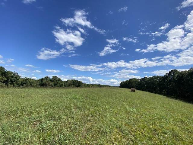 Lot 11 Higher Meadows, Pineville, MO 64856 (MLS #60199665) :: Sue Carter Real Estate Group