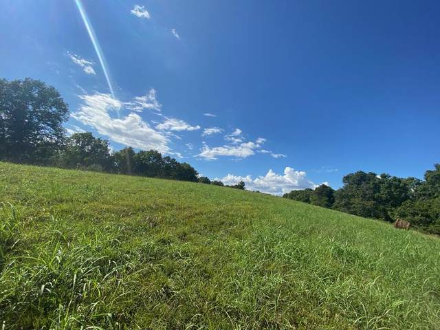 Lot 2 Higher Meadows, Pineville, MO 64856 (MLS #60199742) :: Sue Carter Real Estate Group