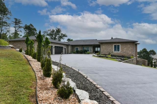 86 Newcastle Road, Branson, MO 65616 (MLS #60200279) :: Team Real Estate - Springfield