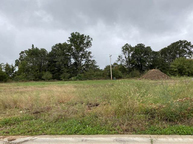 4144 W Sycamore Drive Lot 29, Battlefield, MO 65619 (MLS #60200480) :: Sue Carter Real Estate Group