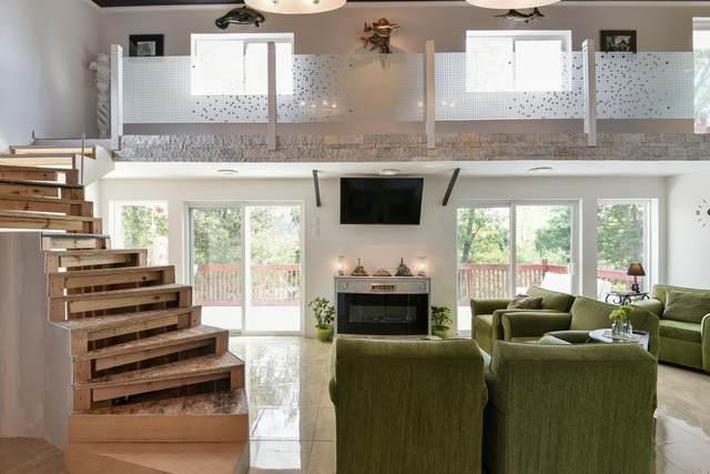 162 Hillside Drive, Forsyth, MO 65653 (MLS #60201191) :: Team Real Estate - Springfield