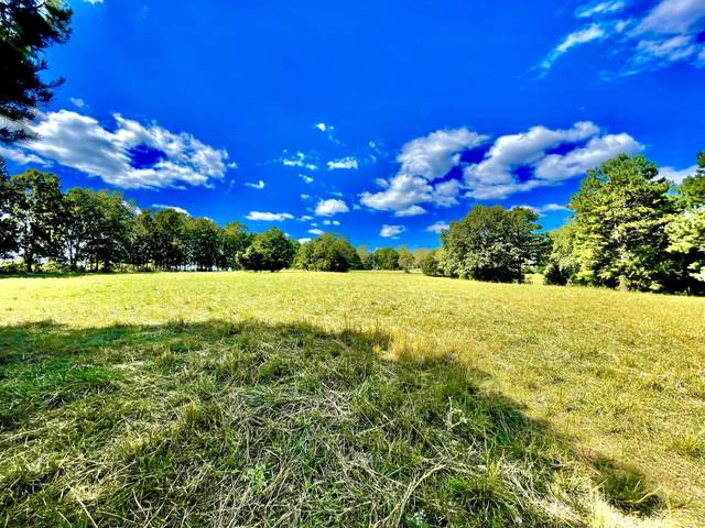 000 County Road 253A, Drury, MO 65638 (MLS #60201772) :: Sue Carter Real Estate Group