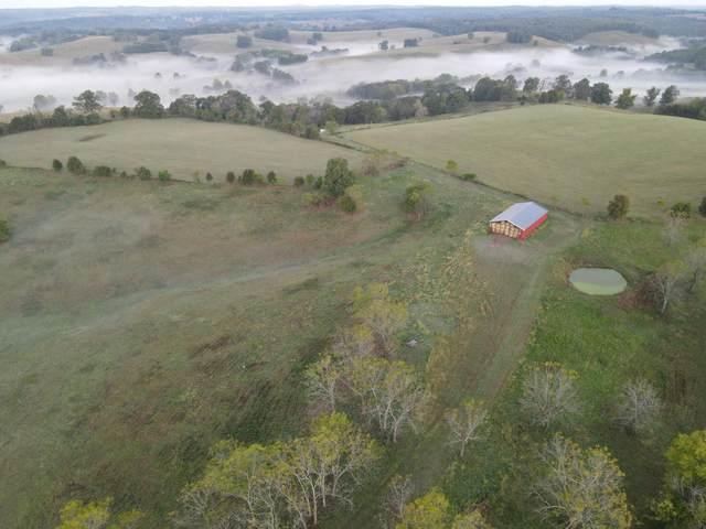 000 County Road 137, Wasola, MO 65773 (MLS #60203130) :: Clay & Clay Real Estate Team