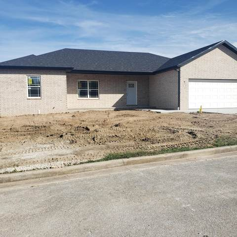 904 Lakeview Drive, Aurora, MO 65605 (MLS #60203636) :: Team Real Estate - Springfield