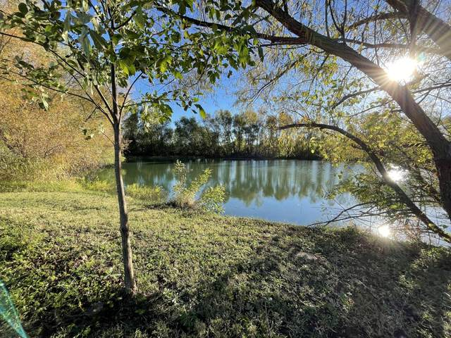 000 County Road 192 1-2, Carthage, MO 64836 (MLS #60203848) :: Team Real Estate - Springfield