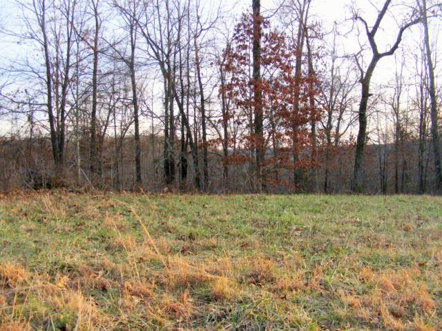Lot 8 & 9 Misty Mountain, Bruner, MO 65620 (MLS #11401617) :: Sue Carter Real Estate Group