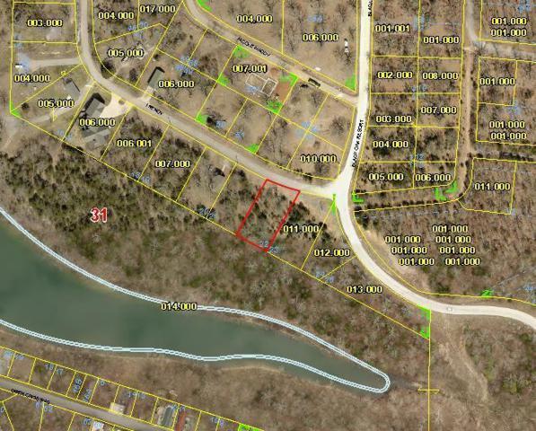 Tbd Trendy Lane, Lampe, MO 65681 (MLS #60042793) :: Greater Springfield, REALTORS