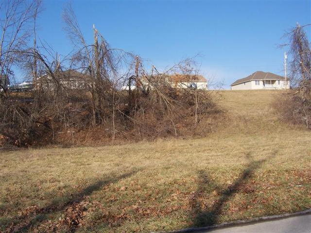 Lot 9 Mcvey Street, Mt Vernon, MO 65712 (MLS #60055464) :: Sue Carter Real Estate Group