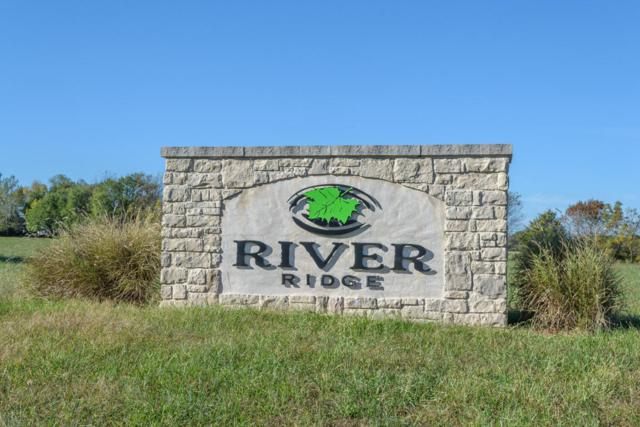 0 L 20 Russell Ridge Road, Nixa, MO 65714 (MLS #60060958) :: Weichert, REALTORS - Good Life