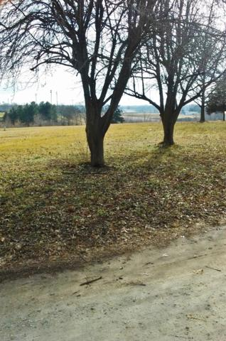 0 County Road Y 500-A, Ava, MO 65608 (MLS #60069546) :: Weichert, REALTORS - Good Life