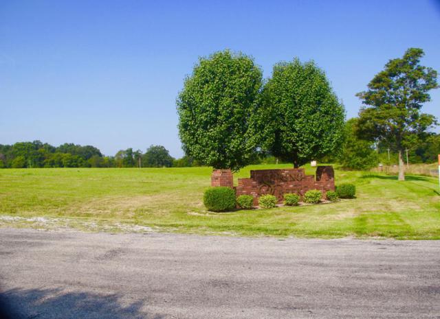 Lot 1 Clearsprings Road, Sparta, MO 65753 (MLS #60086575) :: Greater Springfield, REALTORS