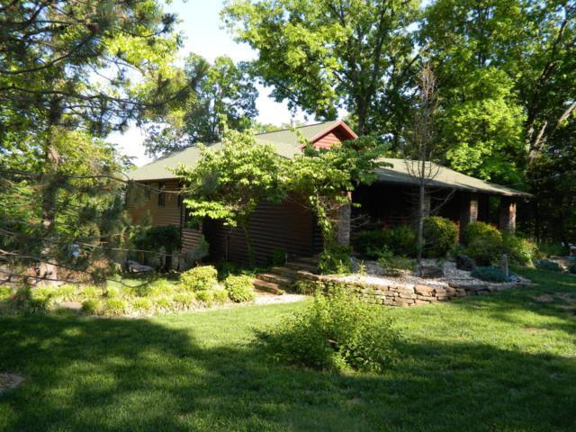 253 Lakeland Avenue, Hollister, MO 65672 (MLS #60102069) :: Greater Springfield, REALTORS