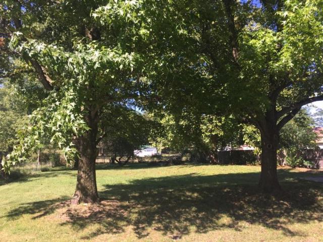 345 Meadowlark Street, Fair Grove, MO 65648 (MLS #60102248) :: Sue Carter Real Estate Group
