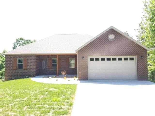 1290 Emory Creek Boulevard, Branson, MO 65616 (MLS #60104192) :: Team Real Estate - Springfield