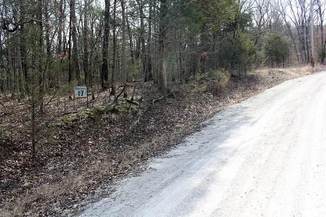 Lot 17 Monticello Road, Galena, MO 65656 (MLS #60106090) :: The Real Estate Riders