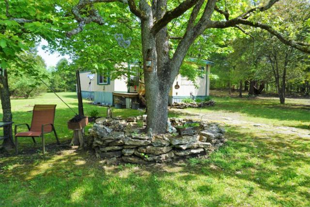55 Patterson Hill Lane, Theodosia, MO 65761 (MLS #60107580) :: Team Real Estate - Springfield