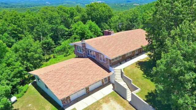 266 Bobcat Falls Road, Gainesville, MO 65655 (MLS #60109351) :: Team Real Estate - Springfield