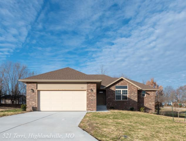 521 Terri Court, Highlandville, MO 65669 (MLS #60111278) :: Team Real Estate - Springfield