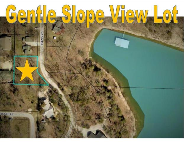 282 Scenic Drive, Hollister, MO 65672 (MLS #60113476) :: Weichert, REALTORS - Good Life