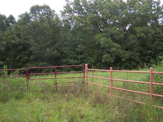 Tbd Highway 95, Vanzant, MO 65768 (MLS #60114307) :: Sue Carter Real Estate Group