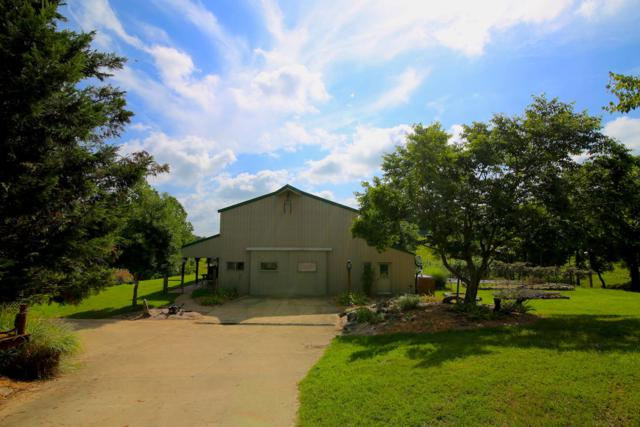 4495 County Road 35, Norfork, AR 72658 (MLS #60115306) :: Sue Carter Real Estate Group