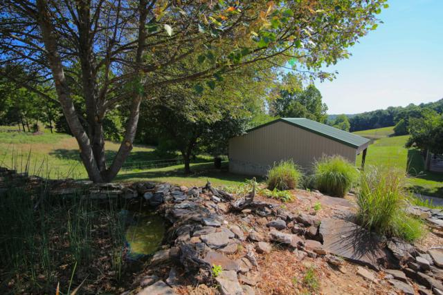 4495 County Road 35, Mountain Home, AR 72653 (MLS #60115308) :: Sue Carter Real Estate Group